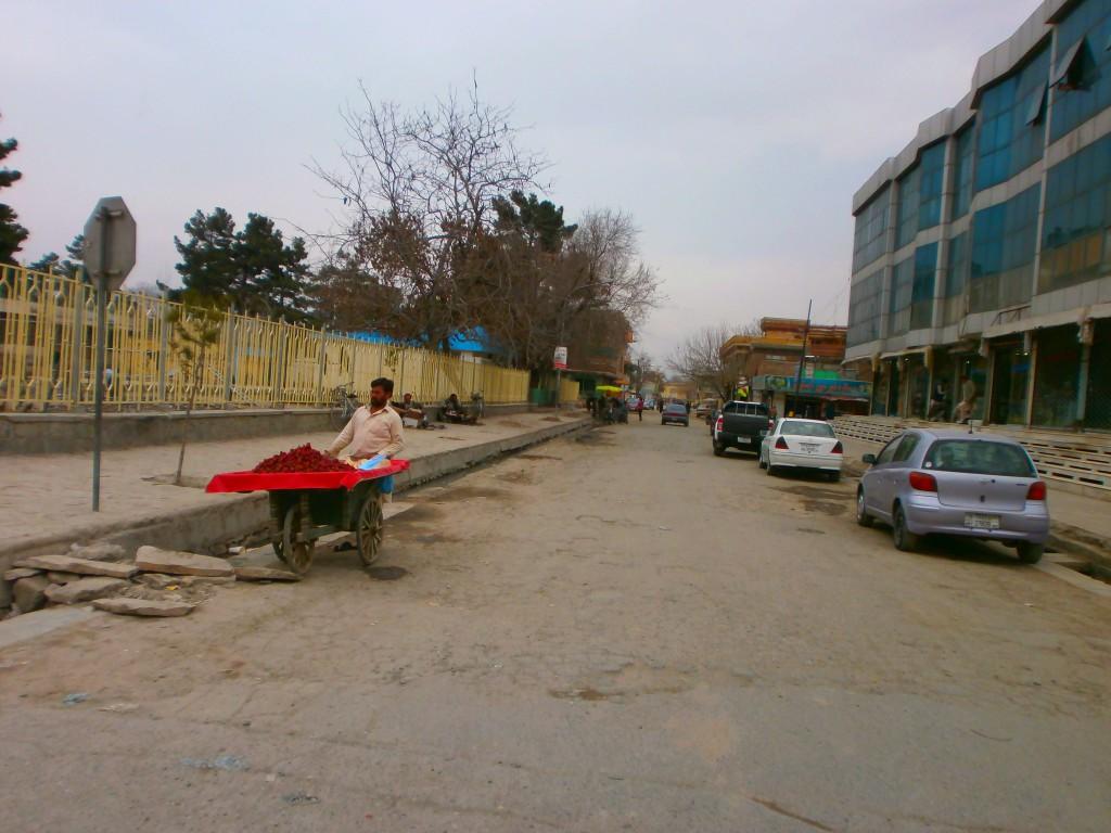 A Kabuliwallah of Kabul